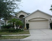 8482 Lake Windham Avenue, Orlando image