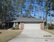 102 Holly Springs Court, Conway image