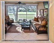 10517 Washingtonia Palm WAY, Fort Myers image