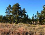 Hwy 89, Custer image