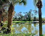 16448 Timberlakes DR Unit 103, Fort Myers image