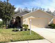 1246 Winding Willow Drive, Trinity image
