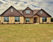 413 Creekside Meadow, Salado image