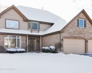 207 Lions Court, Lake Zurich image