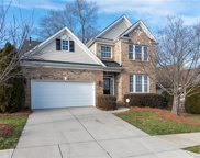 830  Platinum Drive, Fort Mill image