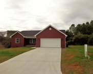851 Amburn Meadows Lane, Maryville image
