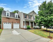 454 Anvil Draw  Place, Rock Hill image