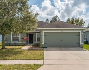 3082 Dasha Palm Drive, Kissimmee image