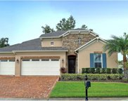 2559 Red Berry Way, Ocoee image