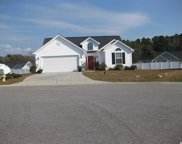 312 Bryant Park Court, Conway image
