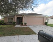 4507 Country Hills Boulevard, Plant City image