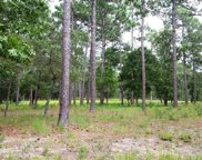 1 Loblolly Drive Sw, Shallotte image