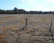 290 Oakbrook Dr, Lake Delton image