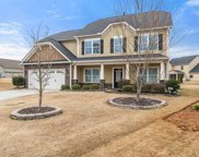 140 Belgian Blue Way, Fountain Inn image