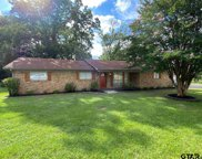 712 Sunnyhill Drive, Tyler image