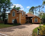 8274 SHADE TREE CT, Jacksonville image