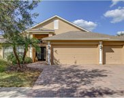 8264 Swann Hollow Drive, Tampa image