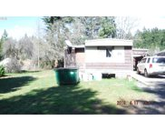 49675 HUCKLEBERRY  LOOP, Oakridge image