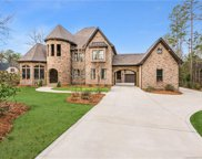 1125  Trinity Ridge Parkway, Fort Mill image