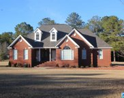 104 Billy Dr, Clanton image