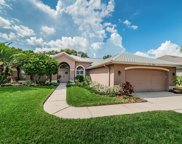8841 Bel Meadow Way, Trinity image