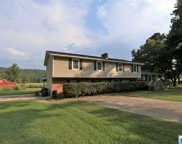 3340 Kelly Creek Rd, Moody image