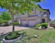 1314 Tweed Willow, San Antonio image