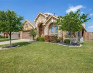 407 Bellflower Court, Mansfield image