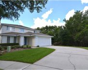 2900 Sunset Vista Court, Kissimmee image