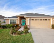 18417 Dajana Avenue, Land O' Lakes image