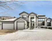 1 White Fir Court, Littleton image