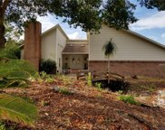 13123 Fish Cove Drive, Spring Hill image