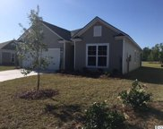 413 Black Cherry Way, Conway image