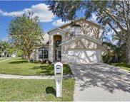 11656 Fox Creek Drive, Tampa image
