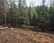 135 Olympic Dr, Sandpoint image