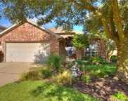 113 Aguilar Dr, Hutto image