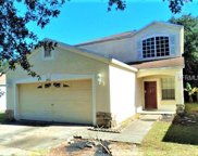 8455 Quarter Horse Drive, Riverview image
