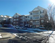 14760  Via Sorrento Drive Unit #7302, Charlotte image