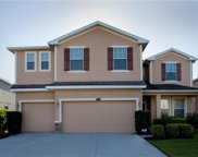 12306 Fairlawn Drive, Riverview image