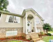 25 Mimosa Ct, Odenville image