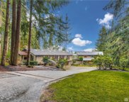 18528 SE 58th St, Issaquah image