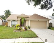 9726 Cypress Pond Avenue, Tampa image