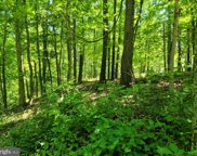 9 Potomac Woods, Great Cacapon image