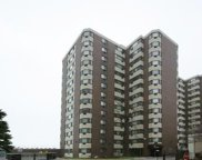 7337 South South Shore Drive Unit 304, Chicago image