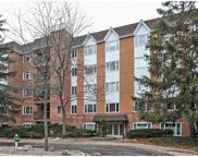 205 Rivershire Lane Unit 216, Lincolnshire image