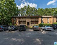 3101 Lorna Rd Unit 1828, Hoover image