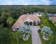 11531 Savannah Lakes Drive, Parrish image