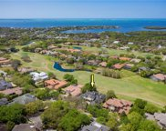 1145 Skye Lane, Palm Harbor image