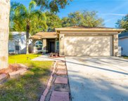 13610 Laraway Drive, Riverview image