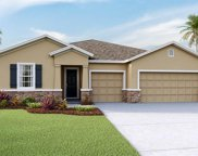 13417 Lakeview Oaks Lane, Riverview image